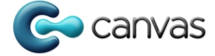 Q&A with Canvas CEO James Quigley about mobile apps for the enterprise and the company's Series B funding round