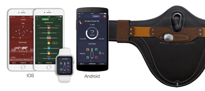 A wearable for horses: New device connects horse and rider