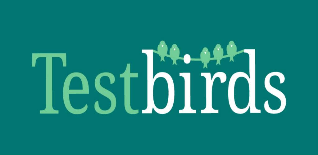 Lightning pitch: Testing times - Testbirds innovates UX quality control