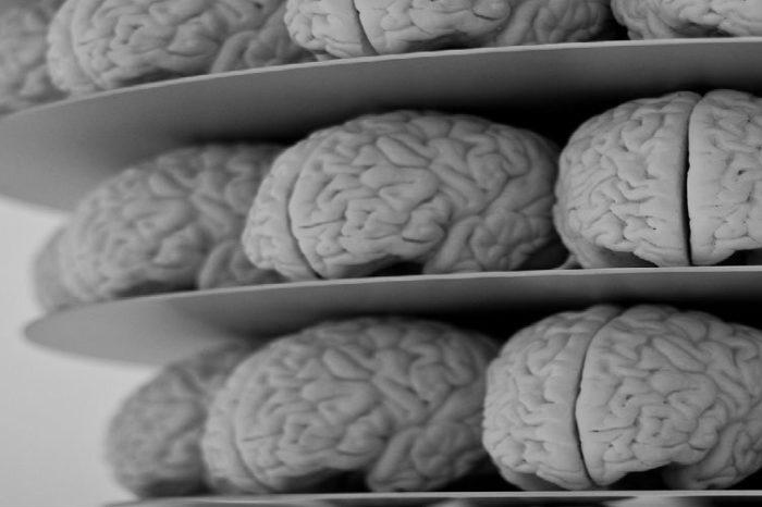 Smart startups push autism adaptations, not 'cures'