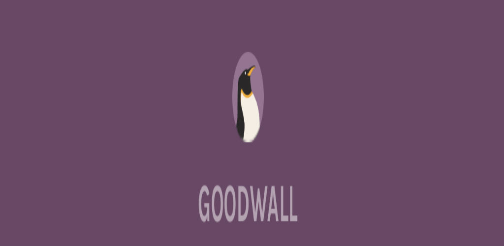 Lightning pitch: Introducing Goodwall, the networking site for teens