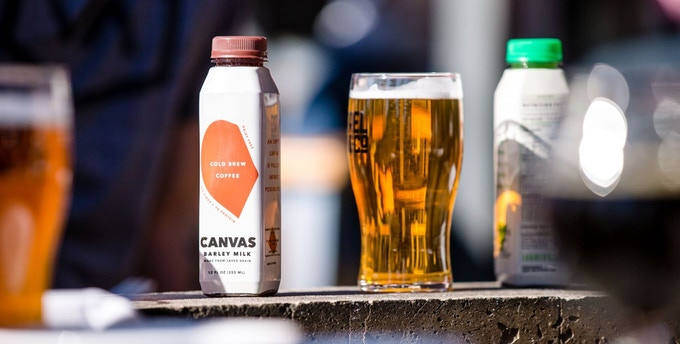 beer startup canvas