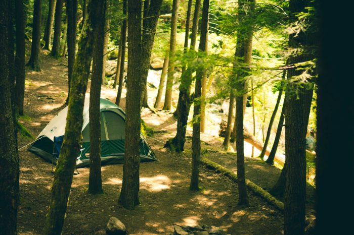 Airbnb of getaways now offers 15,000 campsites