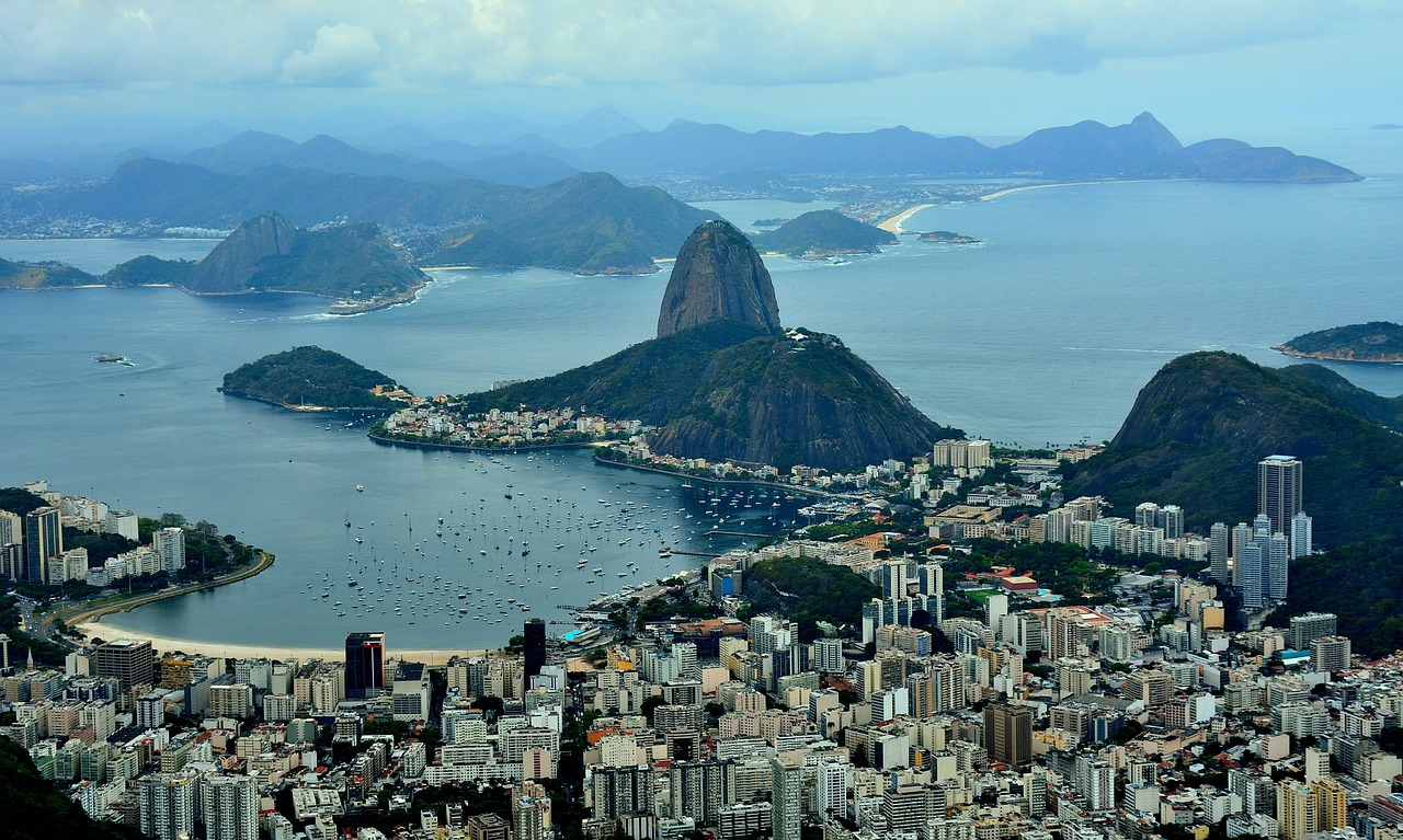 Insight from key players in Brazil's startup ecosystem: Startup networking resources