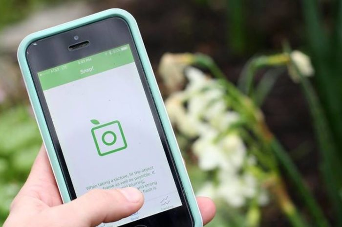 PlantSnap identifies 90% of all plants just by taking a picture